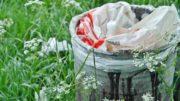 Recycler, un bon geste écolo
