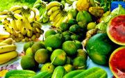 Pourquoi les fruits et légumes sont nos amis ?