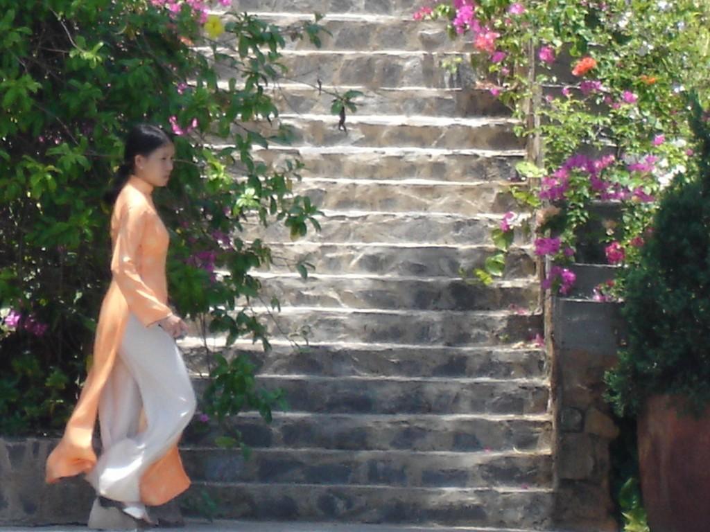 Le Vietnam et les raisons d'un succès : Nature, Culture, Histoire …