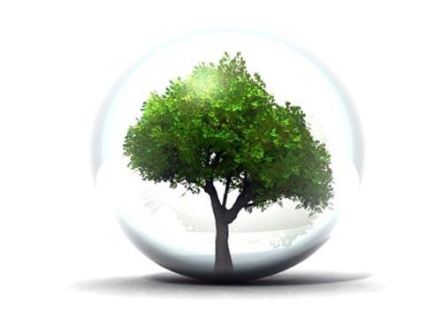 Les bons gestes pour limiter notre impact sur l'environnement
