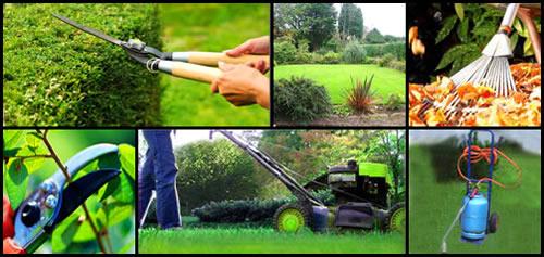 Comment passer le moins de temps possible à entretenir son jardin ?