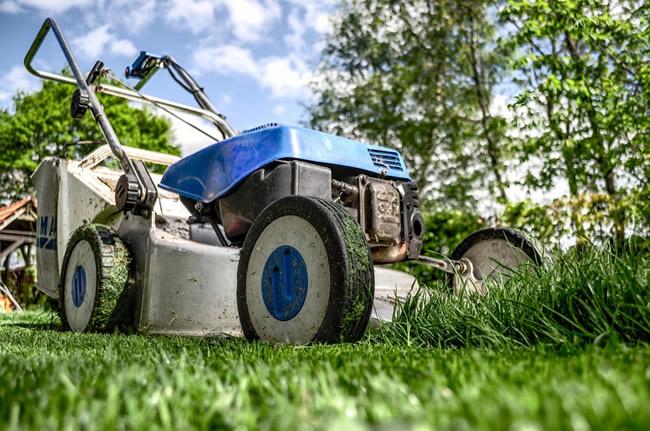 Comment entretenir votre jardin ?