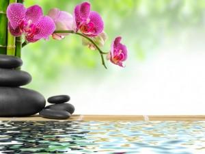 déco intérieur zen