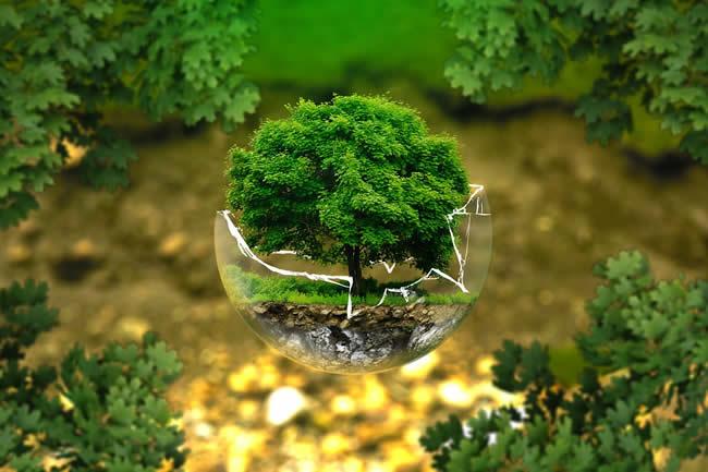 investissement écologique