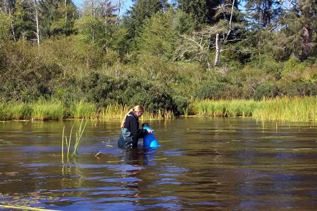 5 conseils pour une pêche à la carpe plus écologique