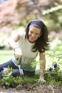 Le jardinage, un bon moyen de se ressourcer