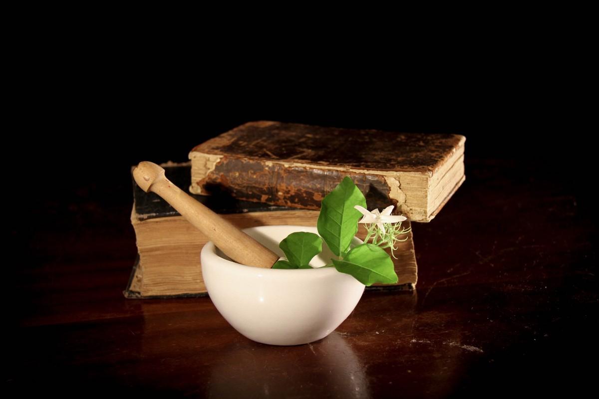Guérir par les plantes : y a-t-il des recettes miraculeuses ?