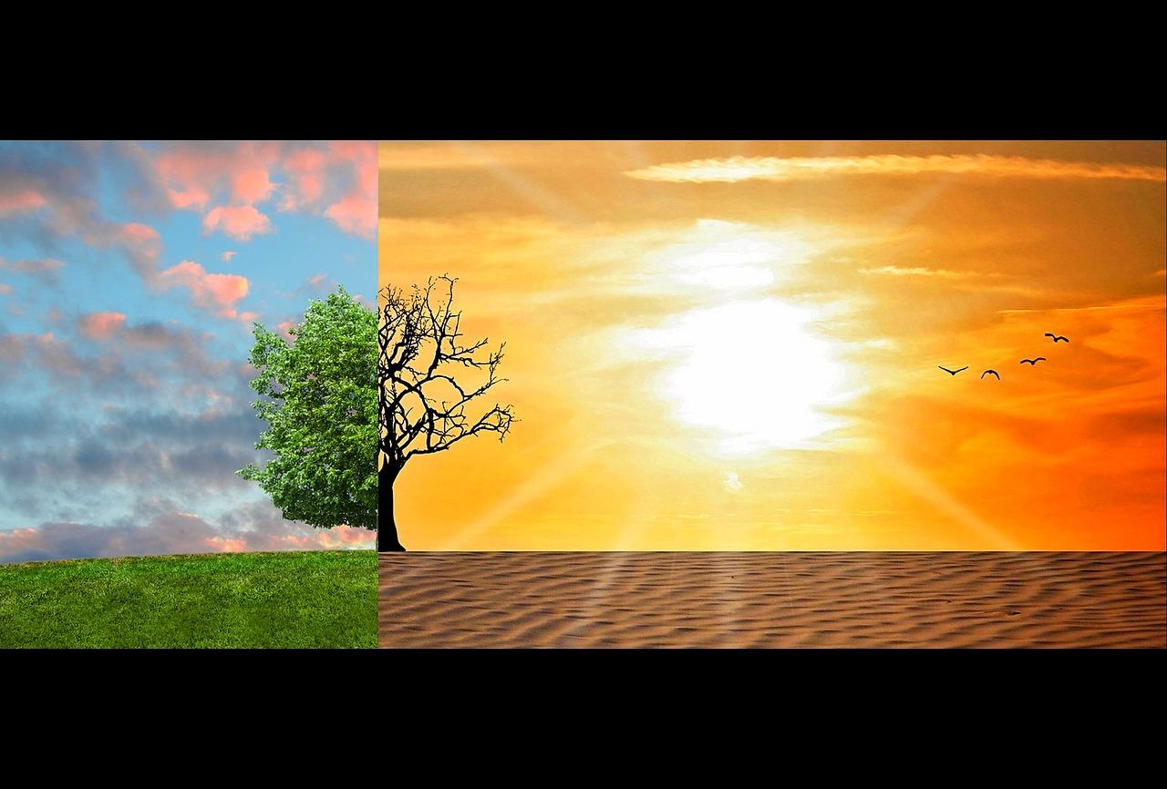 Quelles solutions au quotidien pour inverser le cours du réchauffement planétaire