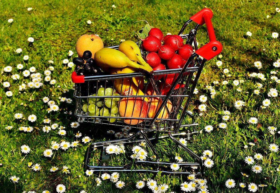 Les formalités essentielles pour ouvrir un magasin bio