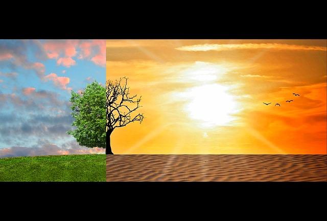 Réchauffement climatique : quelles en sont les conséquences concrètes ?