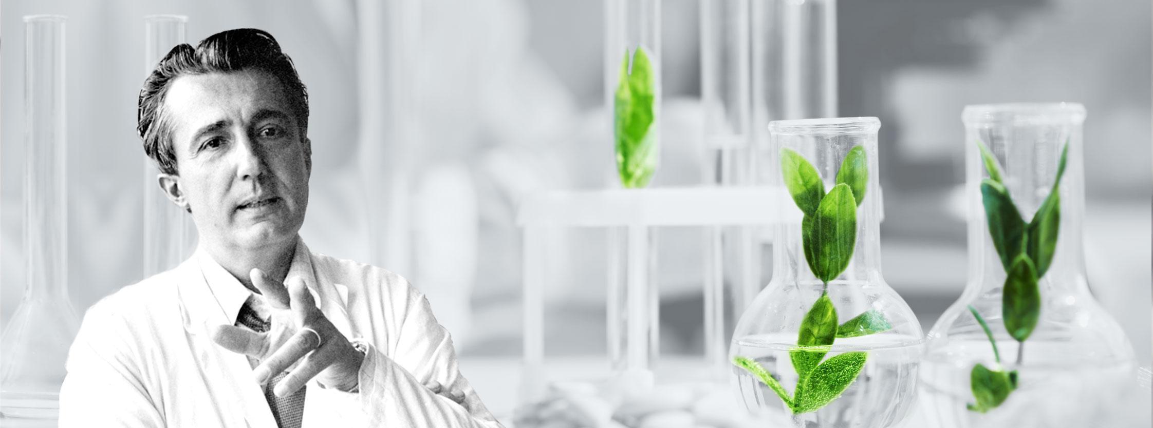 Les extraits naturels de Beljanski sont-ils vraiment efficaces pour combattre le cancer?