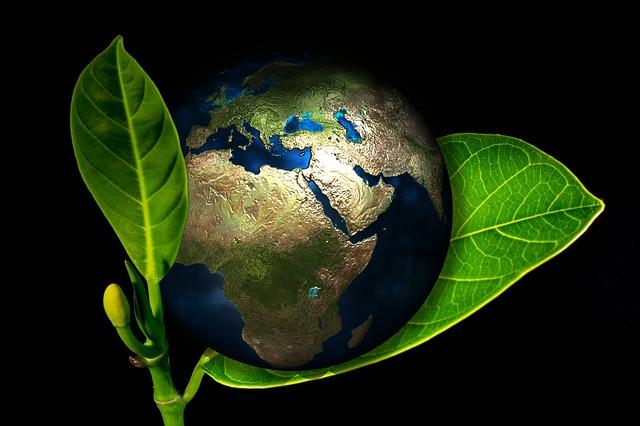 Les gestes écologiques simples, mais efficaces à la maison