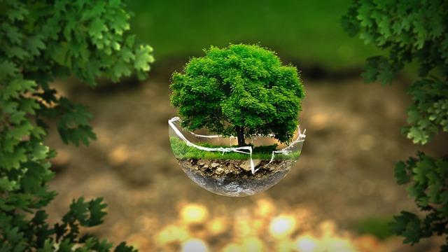 Des gestes éco-citoyens à adopter pour préserver l'environnement