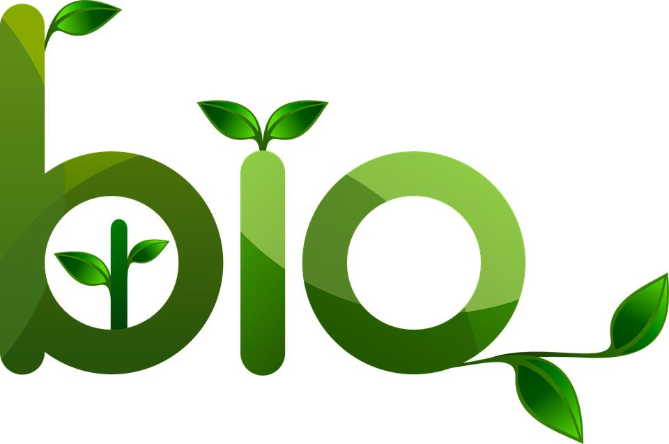 Pourquoi ne pas opter pour les étiquettes écologiques ?