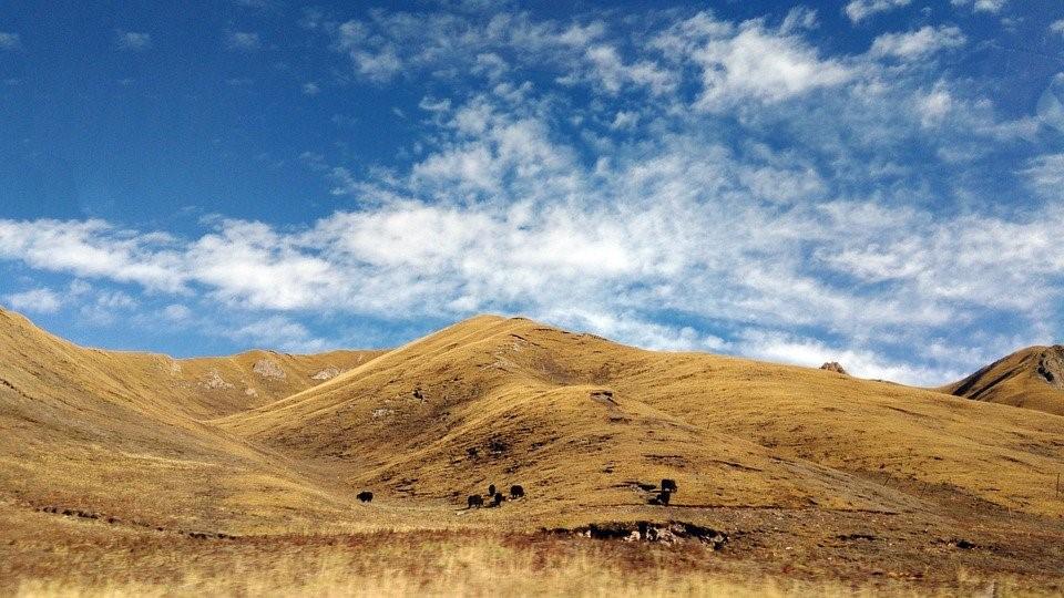 Tibet, Amdo