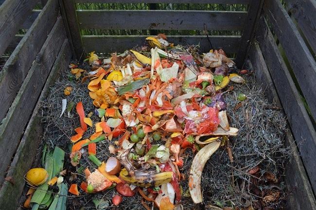 Aperçu sur l'importance du compostage
